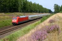 Während es an der Heidebahn kaum größere Erikaflächen direkt an der Strecke gibt, zeigt sich die Hauptstrecke zwischen Hannover und Uelzen z.Z. mit eingen schönen Stellen. 101 123 mit IC 2373 am 20.08.12 südlich von Unterlüss.